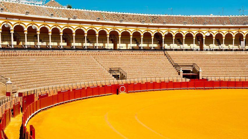 La plaza de toros de la Maestranza se encuentra en el barrio del Arenal de Sevilla, Andalucía, España.